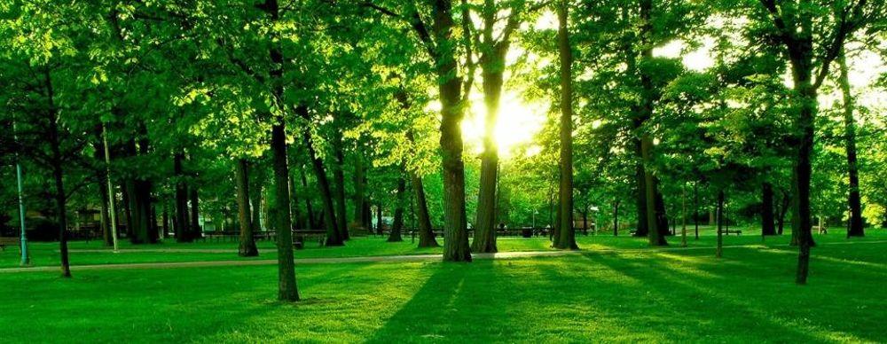 Materiale rigenerato per soluzioni GREEN a rispetto dell'ambiente!!!